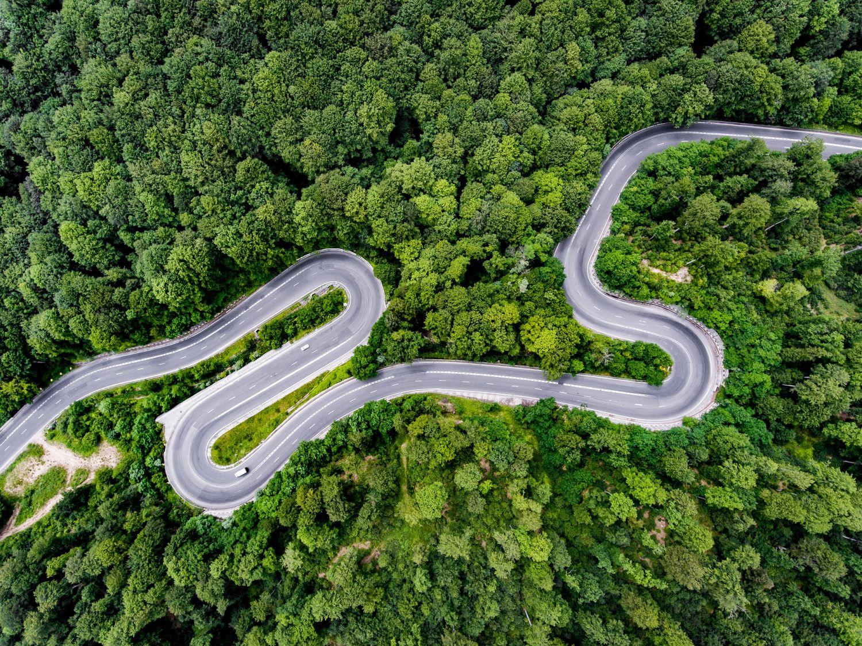 Perspektivaufnahme: Eine Straße schlängelt sich durch den Wald